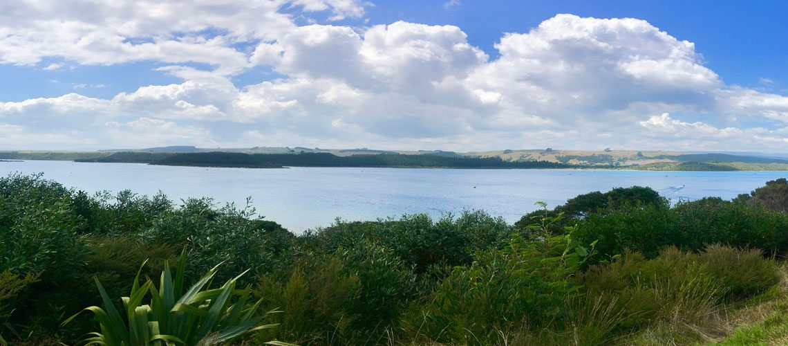 National-Wetlands-Trust-News-and-Events-Kai-Iwi-Lakes-Open-Day